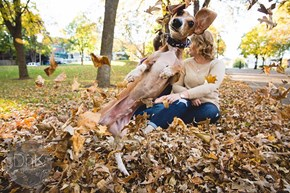 Dog is Living His Best Life While Photobombing His Owner's Engagement Photos and Playing in Leaves
