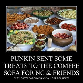 PUNKIN SENT SOME TREATS TO THE COMFEE SOFA FOR NC & FRIENDS