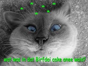 Everyone's enjoyin NC's Birfdai Cake