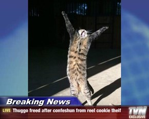 Breaking News - Thuggo freed after confeshun from reel cookie theif