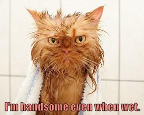 I'm handsome even when wet.