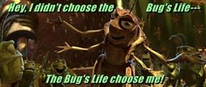 Hey, I didn't choose the                 Bug's Life---  The Bug's Life choose me!