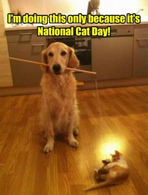 I'm doing this only because it's  National Cat Day!