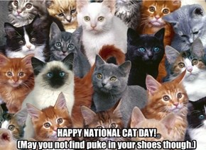 HAPPY NATIONAL CAT DAY! (May you not find puke in your shoes though.)