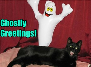 Ghostly  Greetings!
