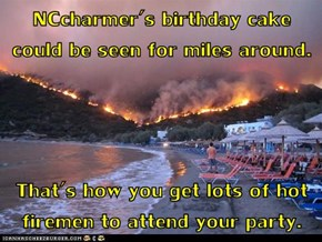 NCcharmer's birthday cake could be seen for miles around.  That's how you get lots of hot firemen to attend your party.