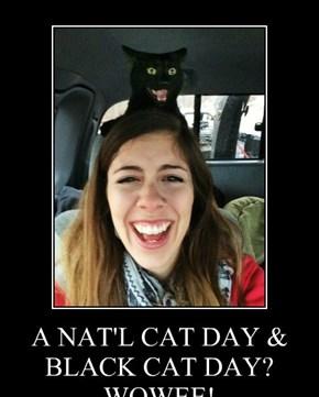 A NAT'L CAT DAY & BLACK CAT DAY? WOWEE!