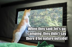 When they said 'let's go camping' they didn't say there'd be nature outside!