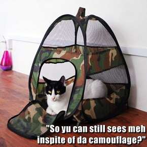 """So yu can still sees meh                                                                              inspite of da camouflage?"""