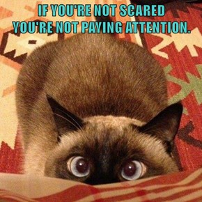 IF YOU'RE NOT SCARED                                                    YOU'RE NOT PAYING ATTENTION.