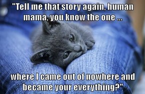 """Tell me that story again, human mama, you know the one ...  where I came out of nowhere and became your everything?"""