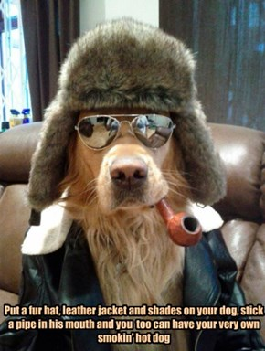 Put a fur hat, leather jacket and shades on your dog, stick a pipe in his mouth and you  too can have your very own smokin' hot dog