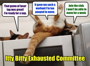 Itty Bitty Exhausted Committee