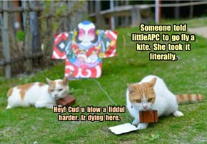 Someone  told  littleAPC  to  go fly a kite.  She  took  it literally.