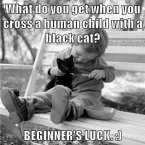 What do you get when you cross a human child with a black cat?  BEGINNER'S LUCK. :)