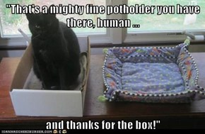 You should know by now, the box always wins!