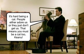 It's hard being a cat. People either adore us or they just don't get us. That means you must be a cat too, Keanu!