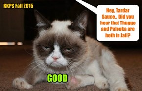 Tardar Sauce weighs in..