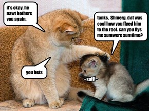 """Shmerg comforts the itteh bitteh voter who were """"outreached"""" by Bandit"""