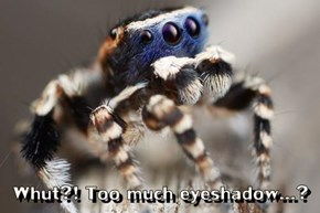 Whut?! Too much eyeshadow...?