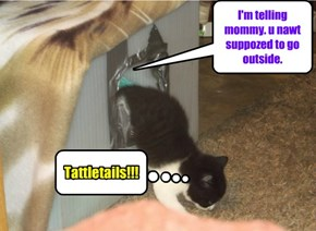 Tattletails!!!