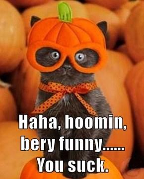 Haha, hoomin, bery funny......     You suck.