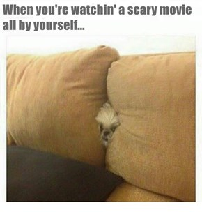 When you're watchin' a scary movie all by yourself...