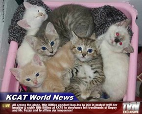 KCAT World News - All across the globe, Ittie Bitties conduct Nap-Ins to join in protest wiff der brudder & sister Ittie Bitties at KKPS to denownse teh treetments of Dopey and Mr. Fuzzy and to affirm der innosense!
