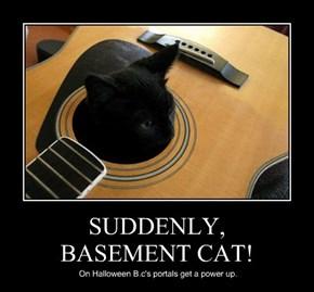SUDDENLY, BASEMENT CAT!