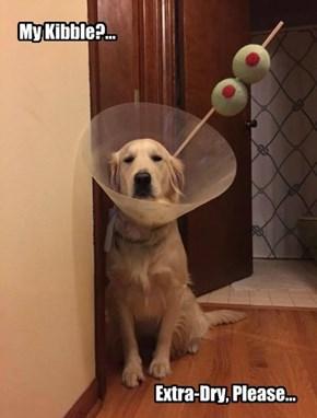 Martin I. Dogg