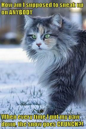 Stoopy snow!