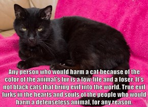 Any person who would harm a cat because of the color of the animal's fur is a low-life and a loser. It's not black cats that bring evil into the world. True evil lurks in the hearts and souls of the people who would harm a defenseless animal, for any reas