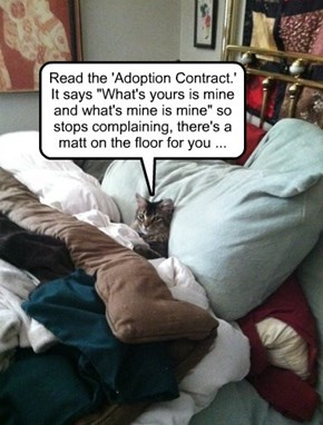 Always read the Fine Print in your Adoption Contract.