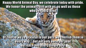 Happy World Animal Day, we celebrate today with pride. We honor the animals still with us, as well as those who've sadly, died.  Of course we're grateful to our pets, we cherish them in every way ... but not only once per year,