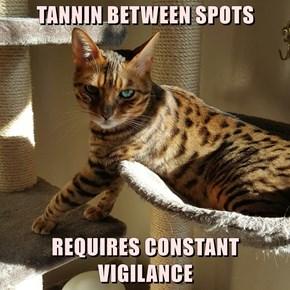 TANNIN BETWEEN SPOTS  REQUIRES CONSTANT VIGILANCE