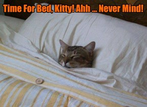 Time For Bed, Kitty! Ahh ... Never Mind!