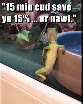 """""""15 min cud save yu 15% ... or nawt."""""""