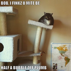 BOB, I FINKZ U MITE BE  HALF A BUBBLE OFF PLUMB