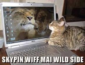SKYPIN WIFF MAI WILD SIDE
