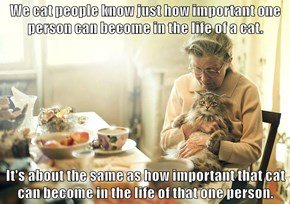 We cat people know just how important one person can become in the life of a cat.  It's about the same as how important that cat can become in the life of that one person.