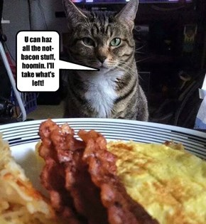 U can haz all the not-bacon stuff, hoomin. I'll take what's left!