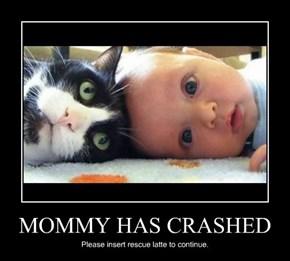 MOMMY HAS CRASHED