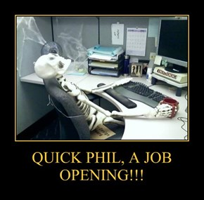 QUICK PHIL, A JOB OPENING!!!