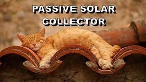 PASSIVE SOLAR COLLECTOR