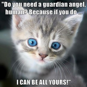"""Do you need a guardian angel, human? Because if you do ...  I CAN BE ALL YOURS!"""