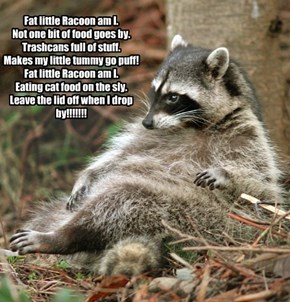 Fat little Racoon am I. Not one bit of food goes by.  Trashcans full of stuff. Makes my little tummy go puff! Fat little Racoon am I.  Eating cat food on the sly. Leave the lid off when I drop by!!!!!!!