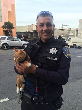 San Francisco Police Enlist the Help of a Man's Cat to Talk Him Off a Ledge