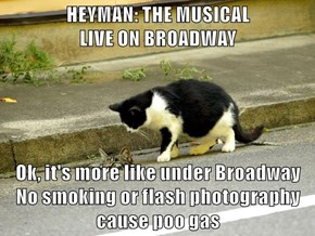 HEYMAN: THE MUSICAL                              LIVE ON BROADWAY  Ok, it's more like under Broadway No smoking or flash photography cause poo gas