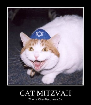 CAT MITZVAH