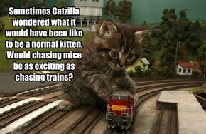 Sometimes Catzilla wondered what it would have been like to be a normal kitten. Would chasing mice be as exciting as chasing trains?